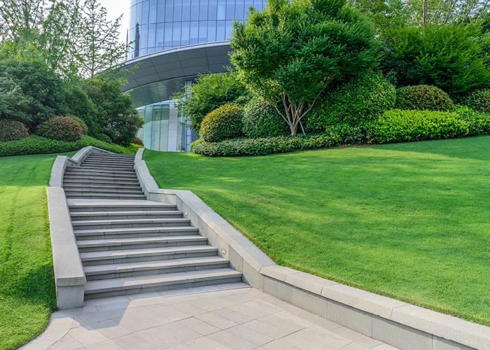Progettazione e realizzazione spazi verdi aziendali